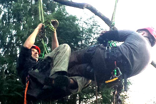 Tree Climbing & Aerial Rescue Treevolution Scotland